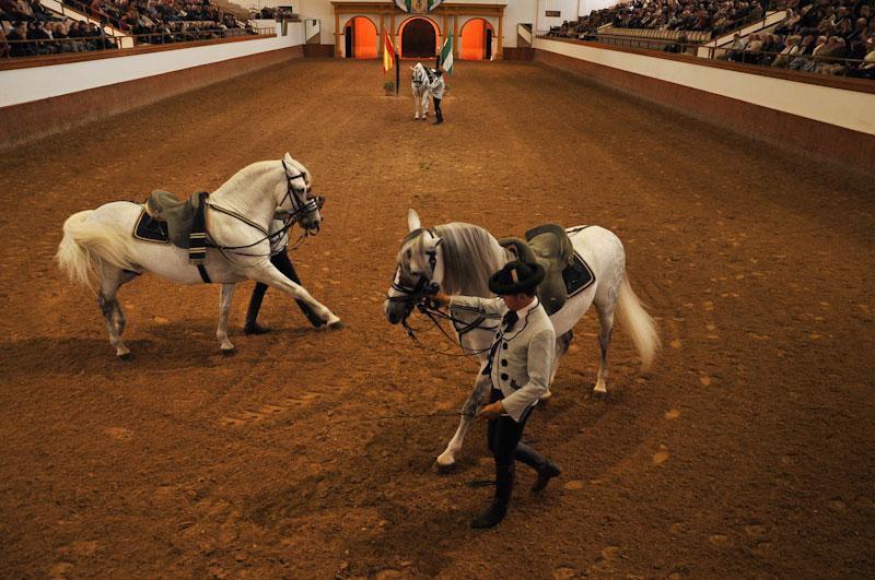 Espectáculo ecuestre en Jerez