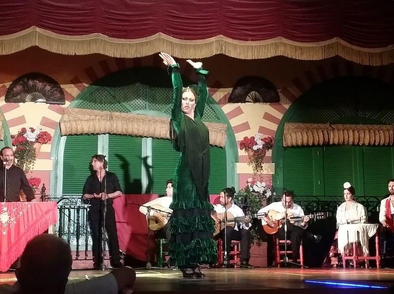 Flamenco show and panoramic night tour